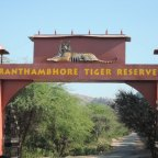 "Ranthambore – Home to ""THE BIG CATS"""